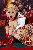 DOK 03 RK0213 02