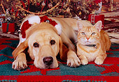 DOK 03 RK0214 05