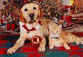 DOK 03 RK0215 01