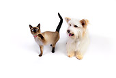 DOK 03 RK0220 01