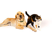 DOK 03 RK0221 01
