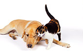 DOK 03 RK0222 01