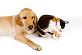DOK 03 RK0228 01