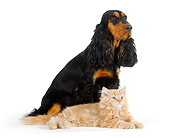 DOK 04 PE0001 01