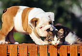DOK 04 RK0013 01