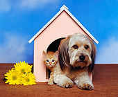 DOK 04 RK0032 06