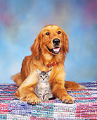 DOK 04 RK0062 01