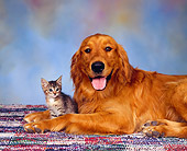 DOK 04 RK0062 02