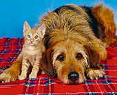 DOK 04 RK0074 02