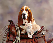 DOK 04 RK0095 01