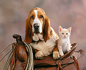 DOK 04 RK0095 05