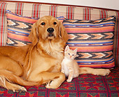 DOK 04 RK0109 05