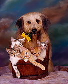DOK 04 RK0003 19