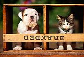 DOK 04 RK0017 07