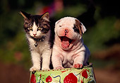DOK 04 RK0020 02