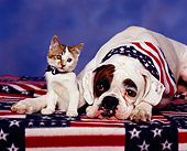 DOK 04 RK0052 01