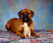 DOK 04 RK0069 01