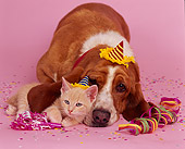 DOK 04 RK0103 07