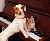 DOK 04 RK0108 01