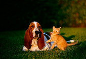 DOK 04 RK0124 09