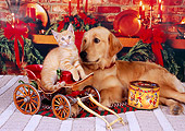 DOK 04 RK0156 08