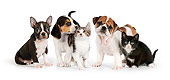 DOK 05 RK0015 01