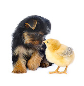 DOK 05 XA0008 01