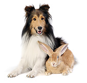 DOK 07 XA0001 01