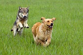 DOK 07 KH0003 01