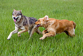 DOK 07 KH0004 01