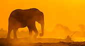 ELE 01 KH0034 01