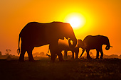 ELE 01 KH0035 01