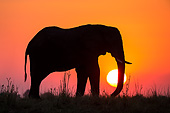 ELE 01 KH0038 01