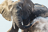 ELE 01 KH0055 01