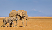 ELE 01 KH0108 01