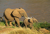 ELE 01 RW0001 01