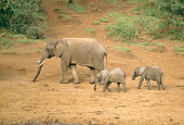 ELE 01 RW0004 01
