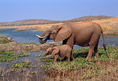 ELE 01 TL0001 01