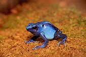 FRG 01 AC0020 01