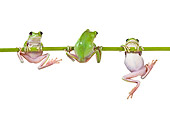 FRG 01 KH0032 01