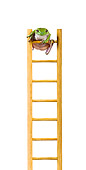 FRG 01 KH0040 01