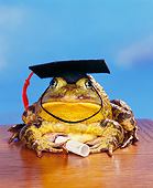 FRG 01 RK0034 14