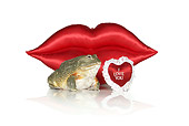 FRG 01 RK0078 02