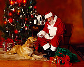 GCD 02 RK0002 03
