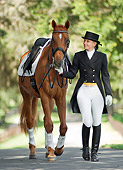 HOR 01 MB0245 01