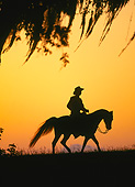 HOR 01 MB0387 01