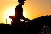 HOR 01 MB0389 01