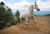 HOR 01 RK1330 27