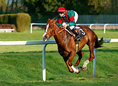 HOR 01 KH0026 01