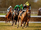 HOR 01 KH0028 01
